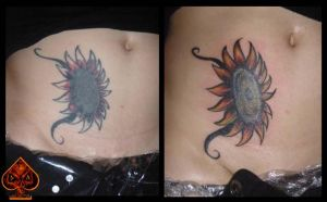 Sunflower before and after by DarkArtsColective