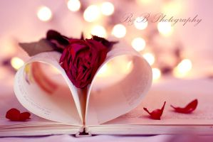 Rose on book by PoisonAgency