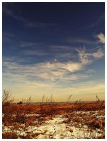 Winter landscape 1 by Csipesz