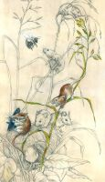 Harvest Mice by PaperSpiders