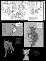 Behind the woods P27 by Savu0211