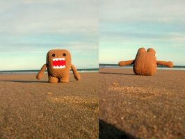 howto: Domo Roll by wastemytimewithyou