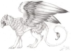 Griffin by DivianaAjatar