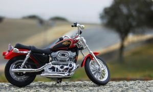 Took new Harley to Laguna Seca by Partywave