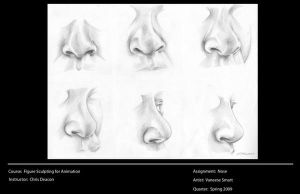 Study of Nose by Vinnie14