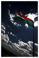 Hungarian Flag by miki3d