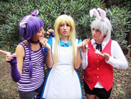Alice in Wonderland 02 by Doriri-chan