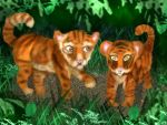 Tiger Cubs by bubblemoon66
