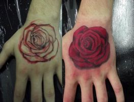 Rose hand by Juliano-Pereira