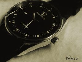 Time Force. by Befmun