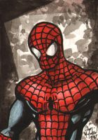 Spiderman ACEO 072011 by ChrisMcJunkin