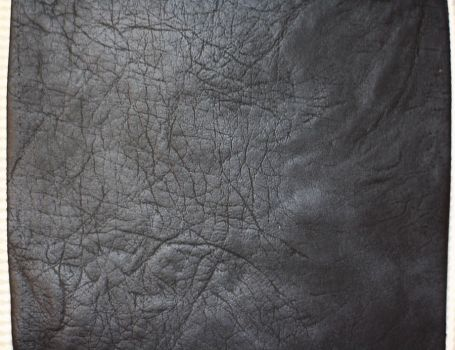 Leather Texture by pelleron