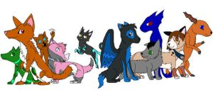 A Group Picture by SkyfersSpirit