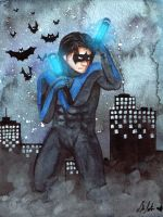 Nightwing by TrollcreaK
