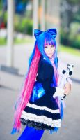 Stocking by studioK2