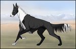 MsK's Dark Jewel [Reference] by Mountainside-Kennels