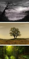 landscapes by dr-kelso