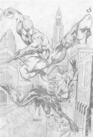Everton Sousa: Black Cat and Spiderman by comiconart