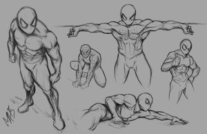 Spider-man poses by Alexandra-Auditore