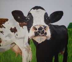 Milky Cows by SheenaBeresford