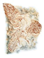 Archaeopteryx Lithographica by albertoguerra