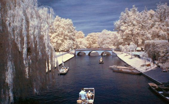Punting on the River Cam by egypt04