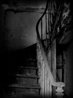 Abandoned house II by CountessBloody
