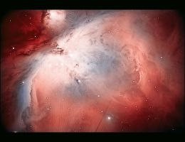 Orion Nebula by astrnmr