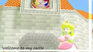 Welcome to my castle by DiscoSaeba
