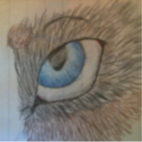 Eye by Drewetta