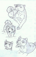 Ginga Doodles by TussenSessan