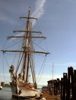 Tall Ship by tomsealstock