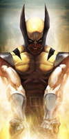 Wolverine by Stealth14