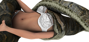 Lingerie snake vore 5 by swiftbladez
