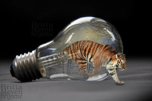 Tiger in the light bulb2 by brijome