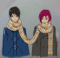 Cold day - scarf by Enorae