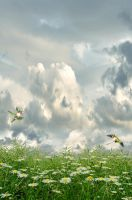 Premade Background 201 by FairieGoodMother