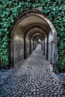 Premade Background Tunnel with out lights 3 by VIRGOLINEDANCER1