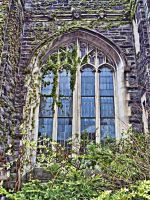 Gothic Window by PrincessInHeaven