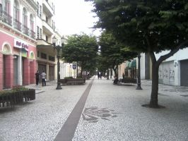 Another of Curitiba's Streets by cekario