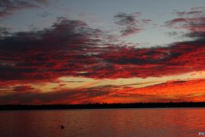 Fall Sunset Series #93 by LifeThroughALens84