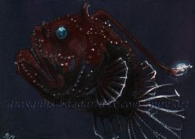 Acute Angler ACEO by De-Vagrant