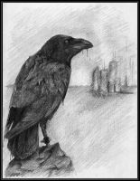 Lonely Raven by Crow-Conglomerate