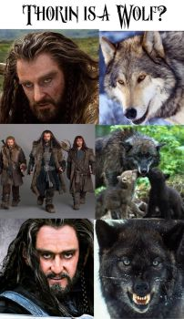 Thorin is... by Little-Tuss