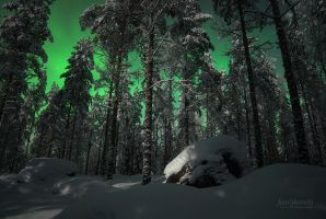Green Glow by Nitrok