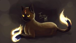 Tiara the fire cat by doblemjwn
