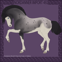 Nordanner Import 492 by Dollyrawr