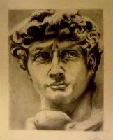 michelangelo david by meeart