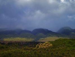 Maui Mountain View by Marilyn958