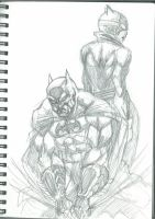 bat and the cat by dushans